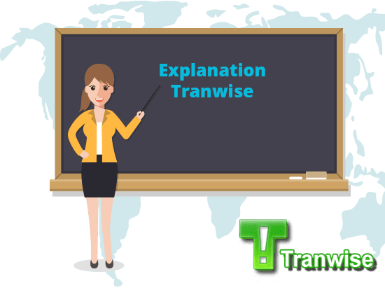 Explaining Tranwise and its features