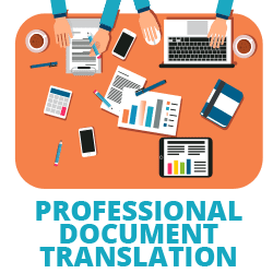 professional document translation