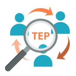 TEP (translation + editing + proofreading)
