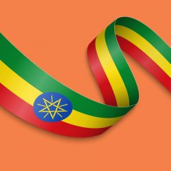 amharic translation