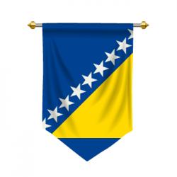 bosnia language