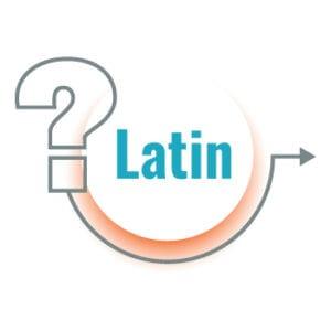 Latin Language translation