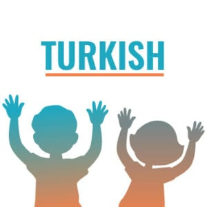 Translation into the Turkish Language