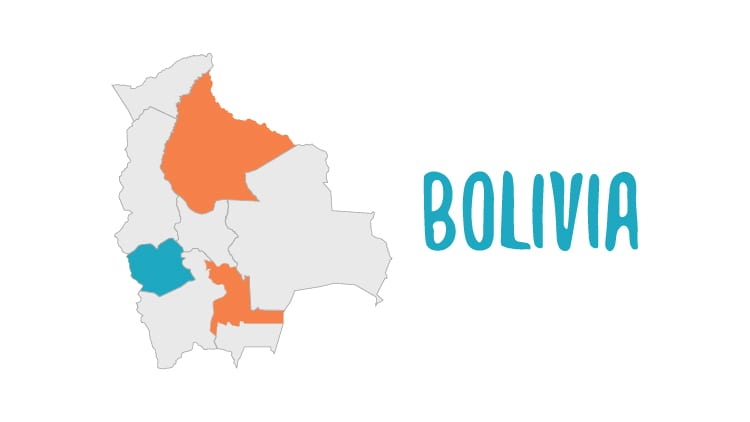 Facts About The Bolivian Language